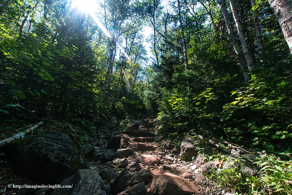 algonquin trail stairs