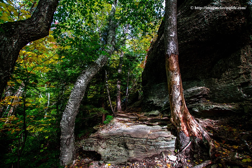 catskill escarpment trail