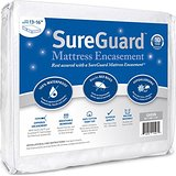 insect mattress cover