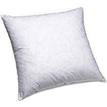 Best down pillow inserts for Best down pillow inserts